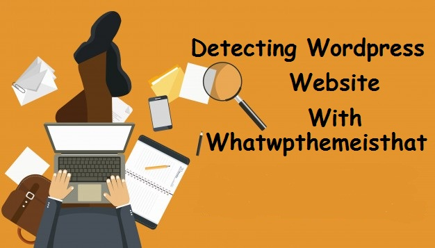 How to detect WordPress themes & Plugins with Whatwpthemeisthat?
