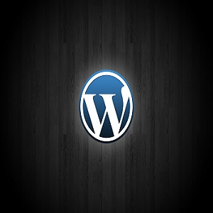 Wordpress- Google Search