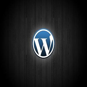 Wordpress- Google Search