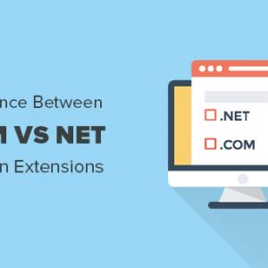 com vs net