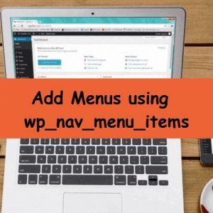 wp_nav_menu_items mini