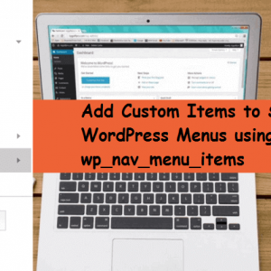 wp_nav_menu_items